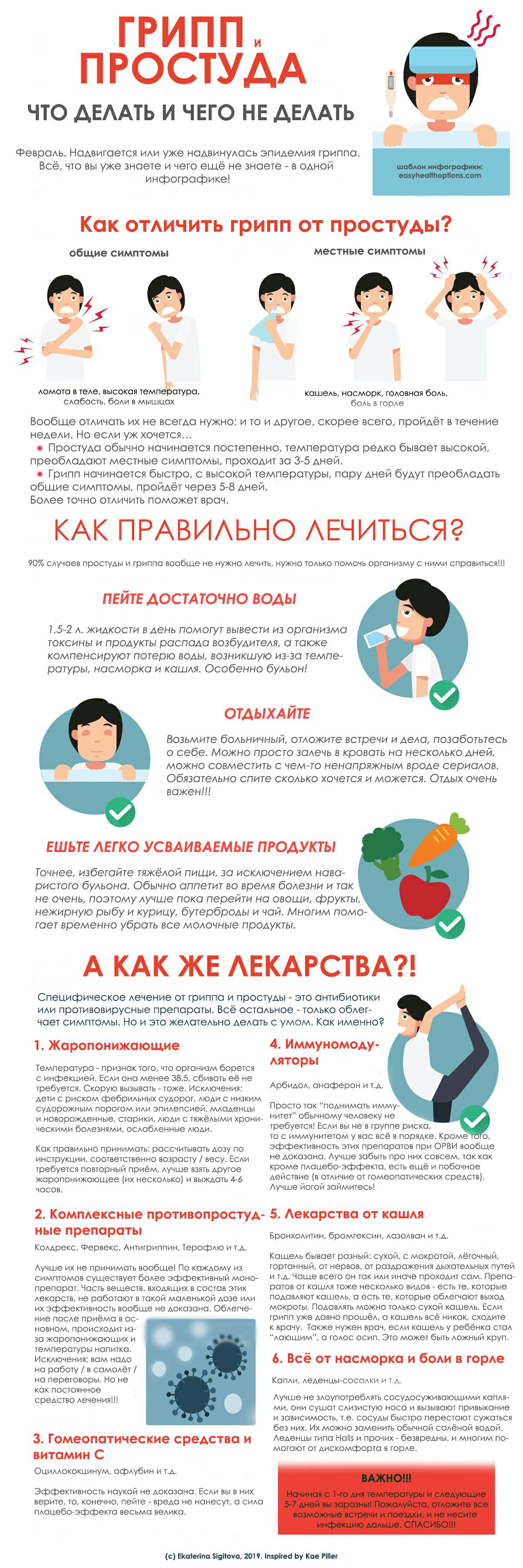 Грипп и простуда: инфографика